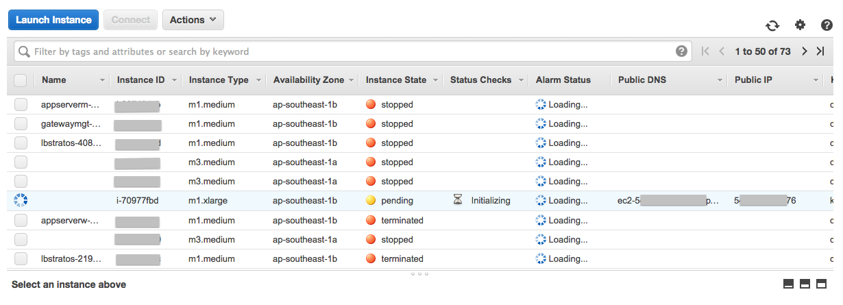 Step 2 : Configuring the WSO2 Private PaaS Instance